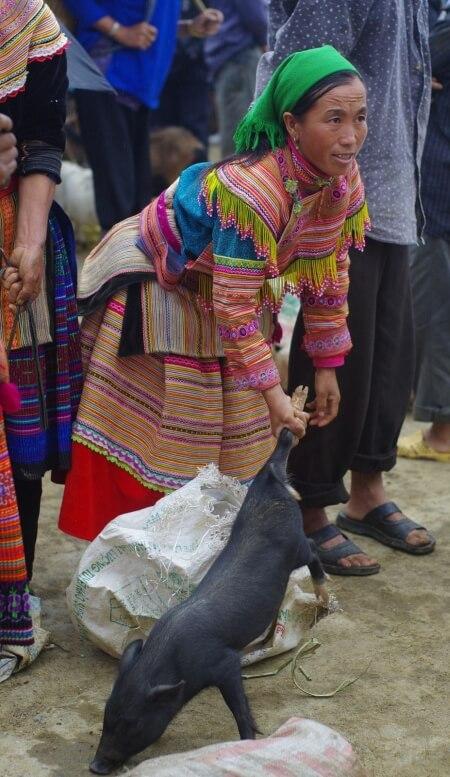 Naine seaga turul (Põhja-Vietnam, Bac Ha)