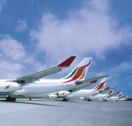 srilankan airlines aircraft tails at airport apron
